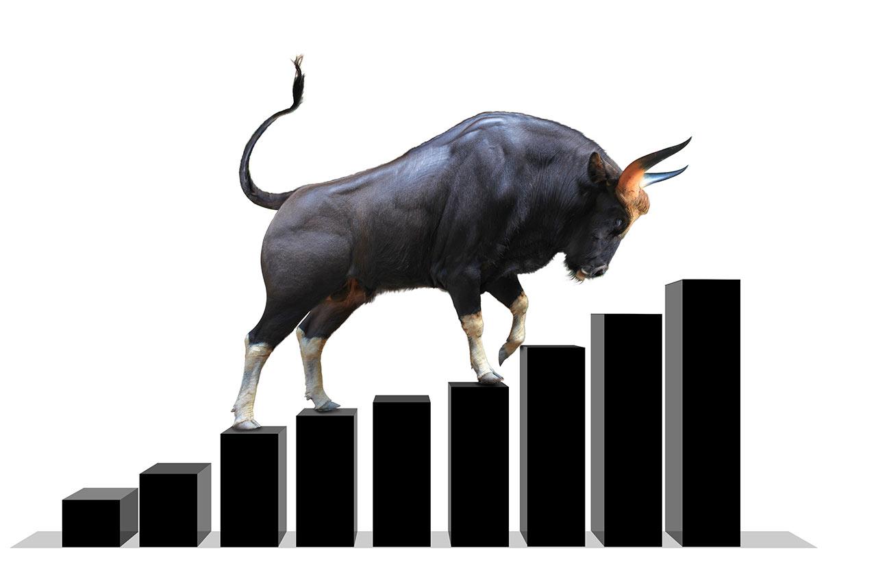 bull market 2020